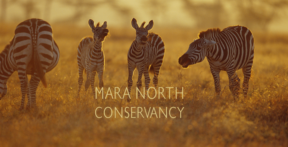 mara north conservancy