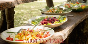 Tomato and Roasted Lemon Salad – a Yotam Ottolenghi recipe