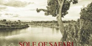 The Sole of Safari