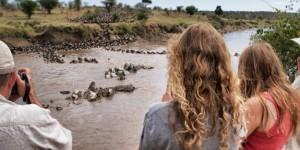 Will Burrard-Lucas's Serengeti Time-Lapse