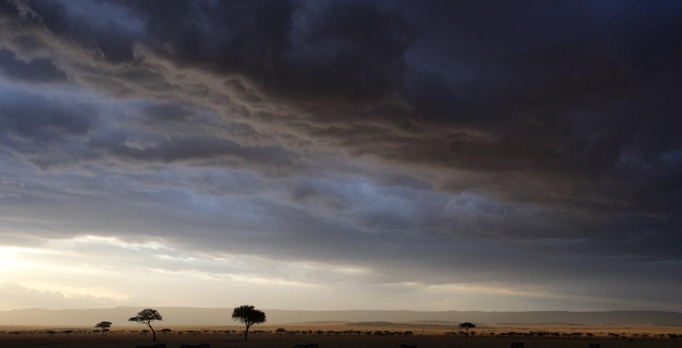 Alex Walker's Serian_Masai Mara_Serengeti Serengeti Sunset Lamai