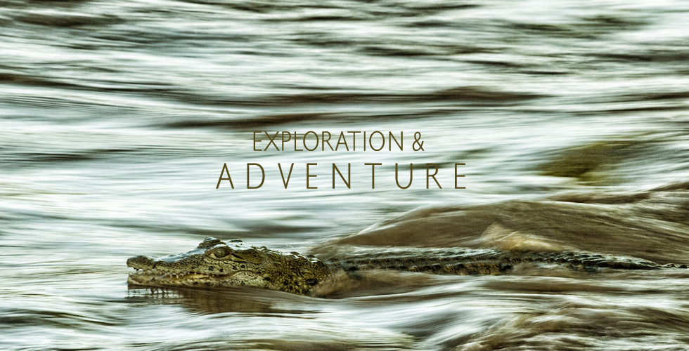 exploration_adventure