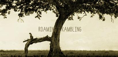 roaming_rambling
