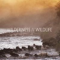 wilderness_wildlife