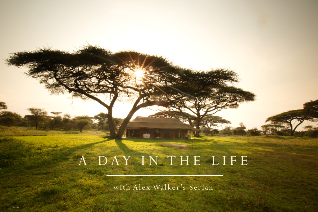 an introduction to the life of walker The kingdom is always but coming: a life of walter rauschenbusch [ christopher h evans] on amazoncom free shipping on qualifying offers  given the.